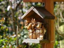 Хлеб в birdhouse Стоковые Фото