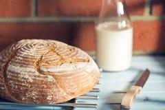 хлеб круглый стоковые изображения rf