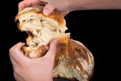 Хлеб ремесленника Стоковое Изображение
