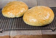 Хлеб розмаринового масла ремесленника на охладительной решетке Стоковая Фотография RF