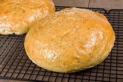 Хлеб розмаринового масла ремесленника на охладительной решетке Стоковое Изображение RF