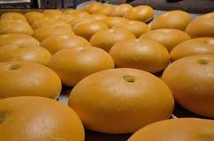 Хлеб bakersfield Завод хлебопекарни Продукция хлеба Свежий белый хлеб от печи стоковые фотографии rf