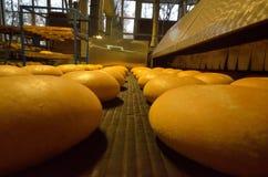 Хлеб bakersfield Завод хлебопекарни Продукция хлеба Свежий белый хлеб от печи стоковое изображение