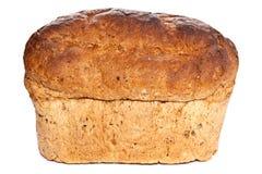 Хлеец хлеба Брайна Стоковое фото RF