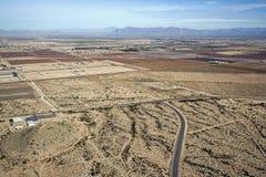Хлопок пустыни стоковая фотография