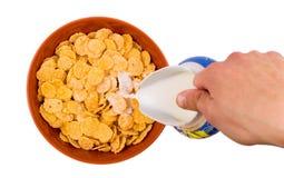 Хлопья в плите с молоком Стоковые Фотографии RF