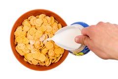 Хлопья в плите с молоком Стоковое Изображение RF