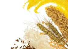 Хлопья - маис, пшеница, гречиха, пшено, рожь, рис и горохи стоковые изображения rf