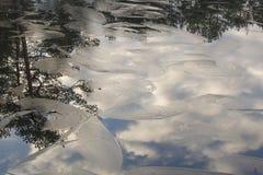 Хлопья льда и отражение деревьев Стоковое Фото