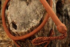 Хлыст ковбоя завитый вокруг ствола дерева Стоковые Изображения