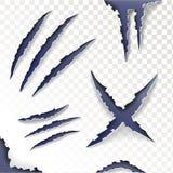 Царапины когтей на прозрачной предпосылке Комплект вектор Стоковые Изображения RF