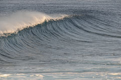 Цаца океана. Стоковая Фотография