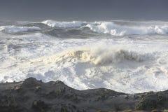 Цацы десятилетия разбивая против скал парка штата акров берега, залива Орегона Coos Стоковое Изображение