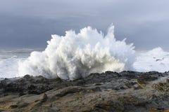 Цацы десятилетия разбивая против скал парка штата акров берега, залива Орегона Coos Стоковая Фотография RF