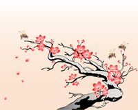 цвести вишни ветви Иллюстрация вектора