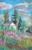Цвести широкой травы Стоковые Изображения
