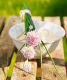 цвести chives Стоковая Фотография