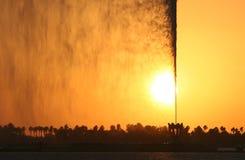 цветастая вода двигателя Стоковое Изображение RF