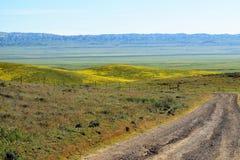 цветастая дорога Стоковое фото RF