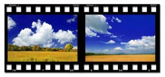 цветастая пленка стоковое изображение rf