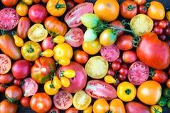 Цветастая предпосылка томатов Свежая органическая текстура томатов Стоковое Изображение RF
