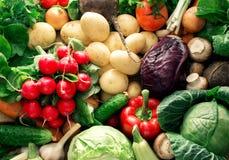 Цветастая предпосылка овощей Комплект свежих овощей закрывает вверх Стоковые Изображения RF