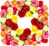 цветастая рамка цветков Стоковые Фотографии RF