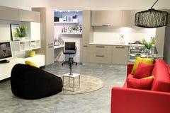 Цветастая современная кухня и живущая комната Стоковое Изображение RF