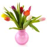 цветастая стеклянная ваза тюльпанов Стоковое Изображение