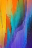 цветастая текстура Стоковые Фотографии RF