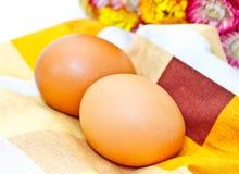 цветастая ткань яичек свежая Стоковое Фото