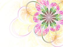 цветастая фракталь цветка Стоковые Изображения RF