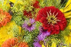 Цветастая флористическая задняя часть Стоковые Изображения