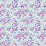 цветастая флористическая картина безшовная Стоковое Изображение