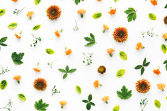 Цветастая флористическая картина Стоковое Изображение RF