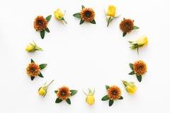 цветастая флористическая рамка Стоковое Изображение