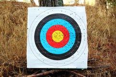 цветастая цель стрельбы Стоковая Фотография