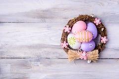 цветастое гнездй пасхальныхя Стоковые Изображения