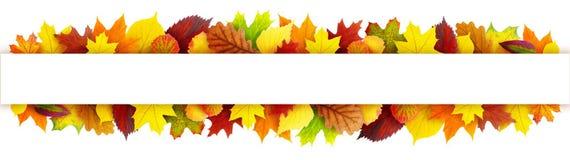 Цветастое знамя листьев осени Стоковое фото RF