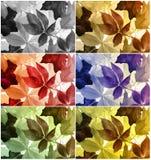 цветастое изображение листьев Стоковые Фото