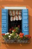 Цветастое окно в Burano стоковые изображения rf