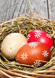 Цветастое пасхальное яйцо в корзине Стоковое Изображение RF