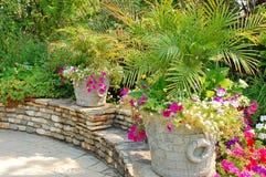 цветастое патио сада Стоковое Изображение