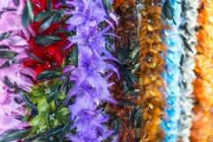 цветастое перо Стоковое Фото