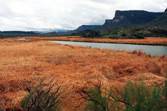 цветастое река земли сценарное Стоковые Изображения RF