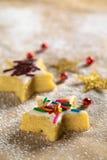 цветастое сформированное печенье брызгает звезду Стоковая Фотография