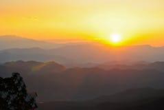 Цветастое утро лета с золотистыми светом и туманом. Стоковое фото RF