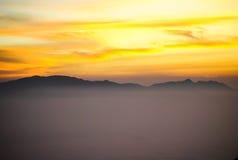 Цветастое утро лета с золотистым светом Стоковые Фото