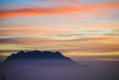 Цветастое утро лета с золотистым светом Стоковые Изображения RF