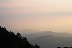 Цветастое утро лета с золотистым светом. Стоковая Фотография RF
